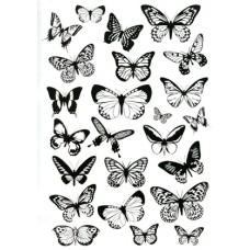 Butterflies Transparency