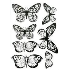 Favourite Flutterbys Transparency